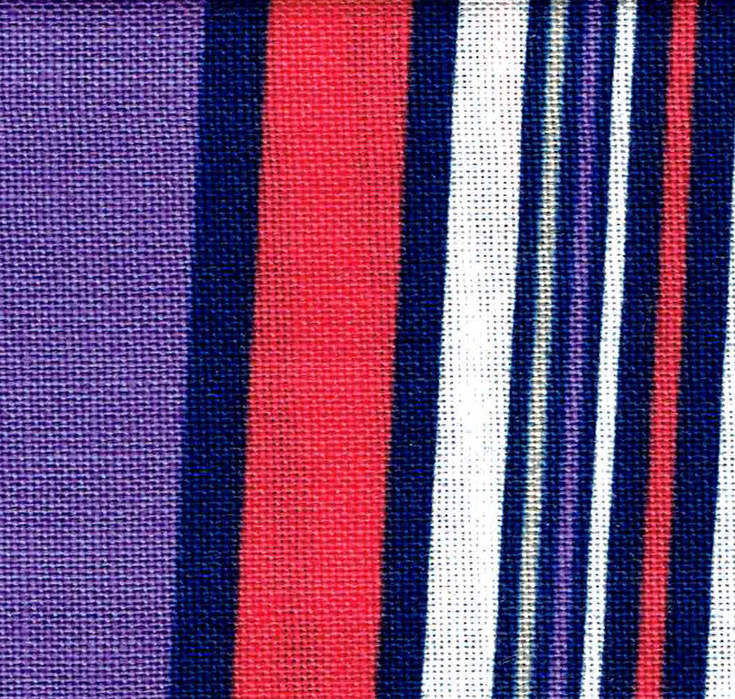 That's My Bag - L062 Purple Stripe